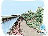 親水・景観保全機能